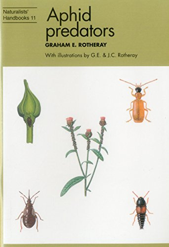 aphid-predators-naturalists-handbook-11-insects-that-eat-greenfly-naturalists-handbook-series