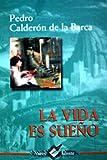 img - for VIDA ES SUE O (NUEVO TALENTO) book / textbook / text book