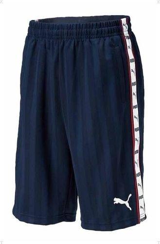 (PUMA) PUMA training shorts 862218 01 Navy / white L