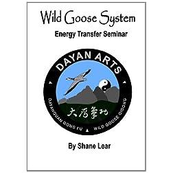 Wild Goose System - Energy Transfer Seminar