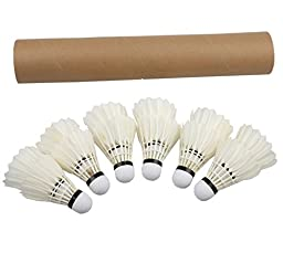 Regail Pack of 12 Professional Badminton Shuttlecock for Badminton Training & Competition