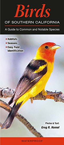 Birds of Southern California: A Guide to Common & Notable Species (Quick Reference Guides)