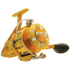 Penn Torque Spinning Reel by Penn