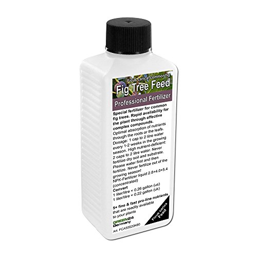 fig-tree-liquid-fertilizer-npk-for-common-fig-ficus-carica-mountain-fig-rock-fig