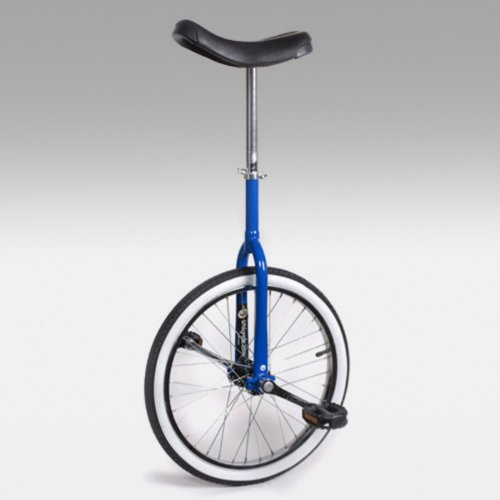 Buy Low Price Trainer 20 Inch Beginner Unicycle – Blue (UNI-UDC-T20BLU)