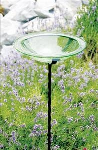 Glass Bird Bath Bowl Iron Light Green
