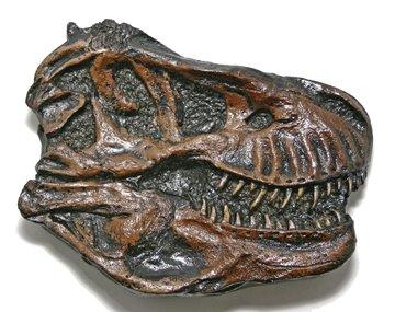 (DM 324) T-Rex Skull Plaque