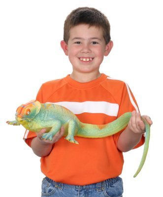 Toysmith Ginormous Grow Lizard - 1