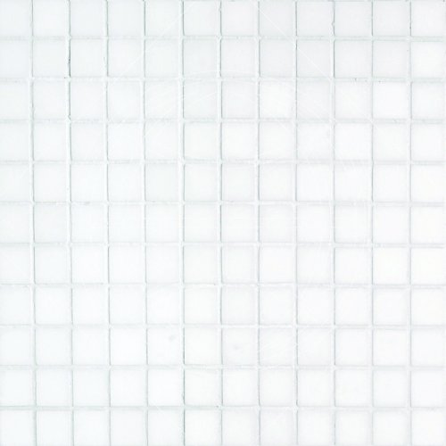 Epoch Tile TW1X1 1x1 Polished Marble, Thassos White