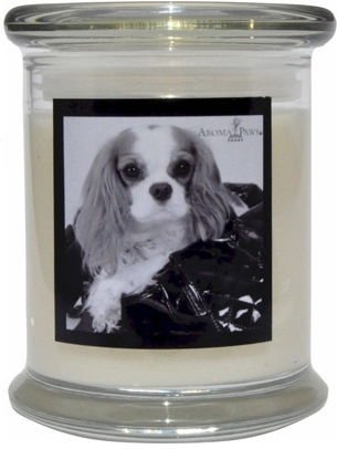 Aroma Paws 354 Breed Candle 12 Oz. Jar - Cavalier King Charles Spaniel