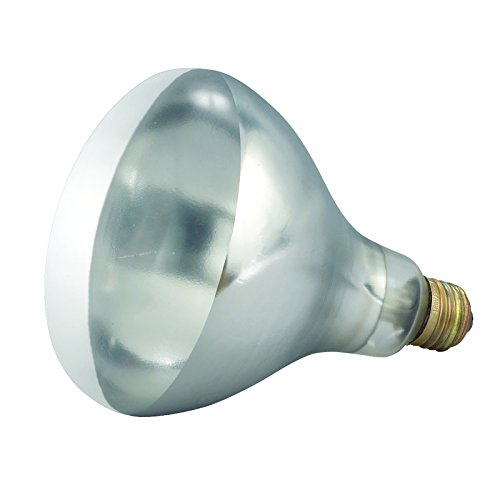 Winco - Bulb for Heat Lamp, Replacement Bulb for EHL-2, EHL-BW, Clear, 250W (Kitchen Heat Lamp compare prices)