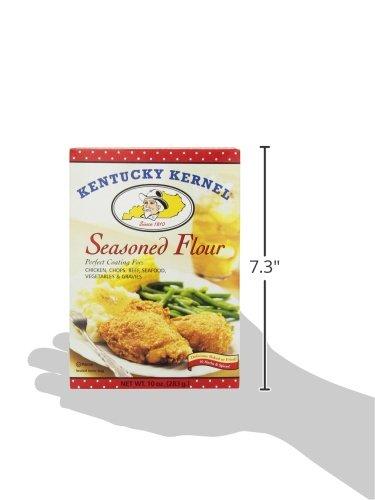 Hodgson Mill Seasoned Flour, 10-Ounce (Pack of 12) Food