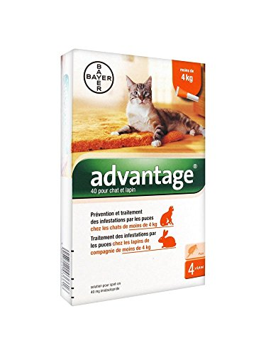 Bayer-Advantage-40-Antifleas-Solution-for-Cat-and-Rabbit-Under-4kg-4-Pipettes