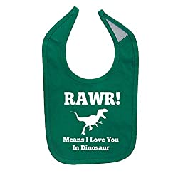 Mashed Clothing Unisex-Baby Rawr! Means I Love You In Dinosaur Cotton Baby Bib (Kelly Green)