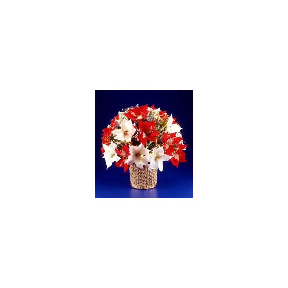 National Tree Company SZSD7 131 18 18 Inch Fiber Optic Stardust Red & White Poinsettia Bush with Gold Petals Long Needle White Twigs Pines Cones and Gold Glitter Basket   Multi Wheel