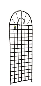 Master Garden Products Willow Round Top Lattice Trellis, 24 by 72-Inch