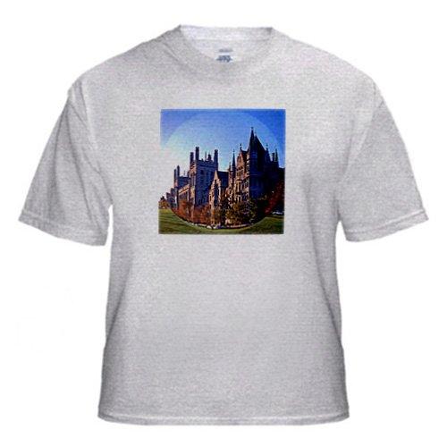 University of Chicago fisheye - Adult Birch-Gray-T-Shirt Large