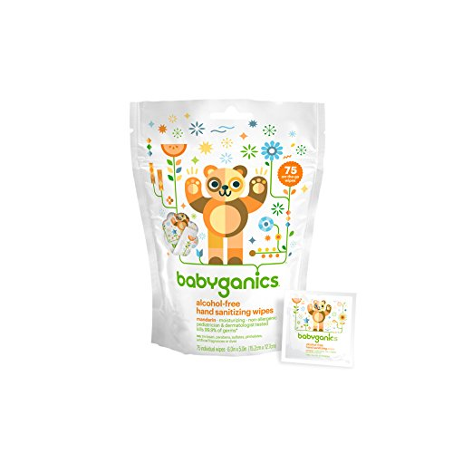 Babyganics Alcohol-Free Hand Sanitizing Wipes