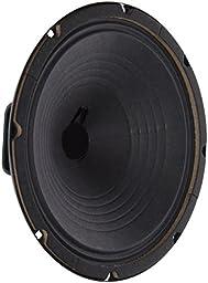 Jensen Vintage P10R16 10-Inch Alnico Speaker, 6 ohm