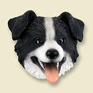 Amazon.com: Border Collie Dog Head Magnet (2 in): Pet Supplies