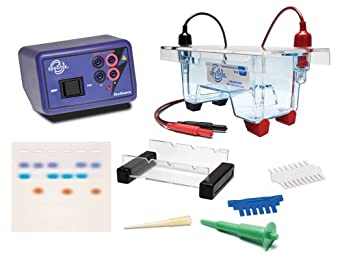 Edvotek 5061 Demonstration DNA Electrophoresis LabStation