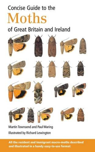 concise-guide-to-the-moths-of-great-britain-and-ireland