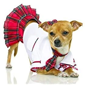 Dog halloween costume girl for pets