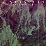 echange, troc Divination - Ambient Dub 1