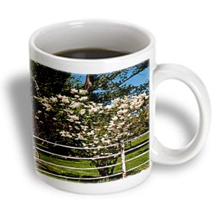 Jos Fauxtographee Realistic - A Pretty Flowering Tree With White Buds And A Wagon Wheel On Green Grass Behind A Fence - 11Oz Mug (Mug_52158_1)
