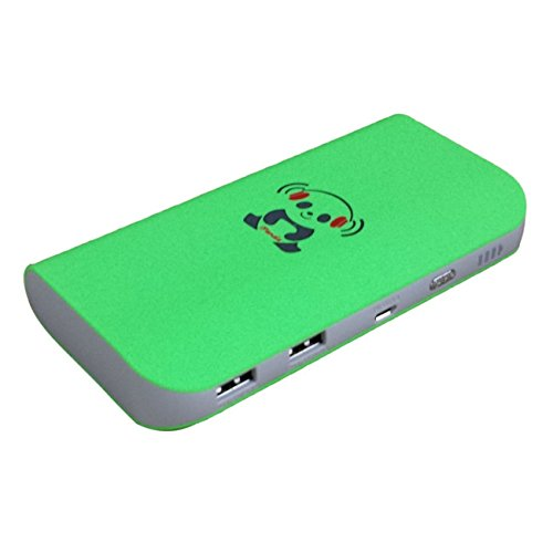 IPANDA 12000mAh Power Bank