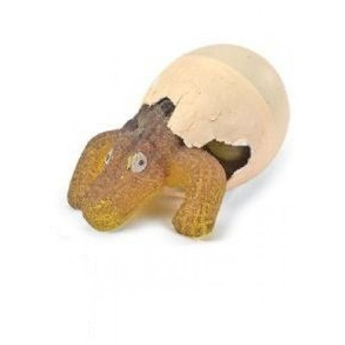 GeoCentral Hatch'em Alligator Egg Growing Pet