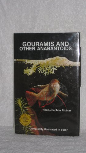 Gouramis and Other Anabantoids