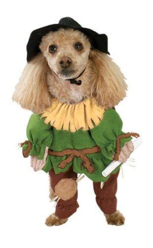 Scarecrow Wizard