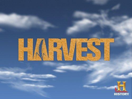 Harvest Season 1