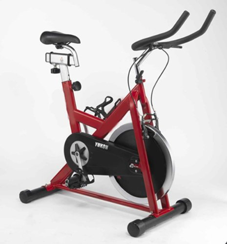 Higol Indoor Exercise Cycle Bike