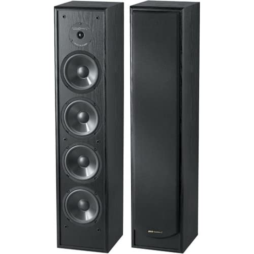 Amazon.com: BIC America Venturi DV84 2-Way Tower Speaker, Black
