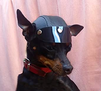 alxshop casque noir pour chien visiere taille s. Black Bedroom Furniture Sets. Home Design Ideas