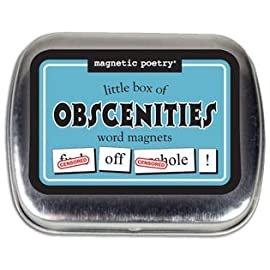 Little Box of Obscenities Magnetic Poetry Word Magnets