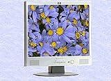 HP F1723 43,2 cm (17 Zoll) TFT-Monitor