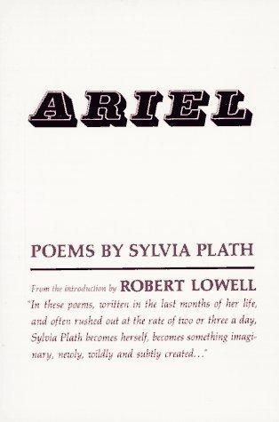a plot summary of sylvia plaths poem in plaster