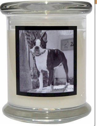 Aroma Paws 352 Breed Candle 12 Oz. Jar - Boston Terrier