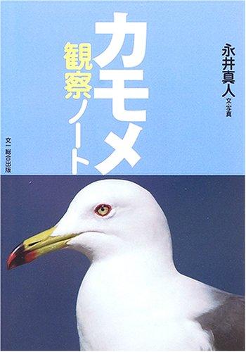 カモメ観察ノート