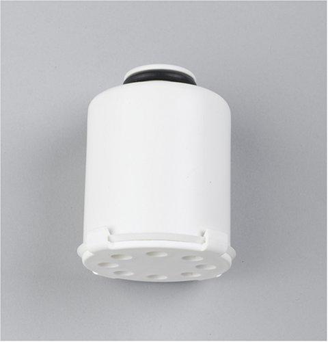 GE FXSCH Replacement Shower Filter