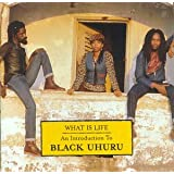 1980-1984 What Is Life  An Inby Black Uhuru
