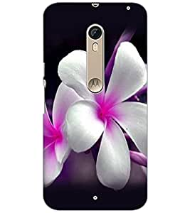 PrintDhaba Beautiful Flowers D-1067 Back Case Cover for MOTOROLA MOTO X STYLE (Multi-Coloured)