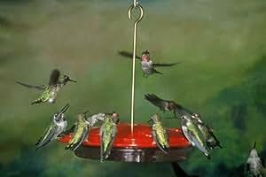 Aspects HummZinger Excel 16 oz Hanging Hummingbird Feeder