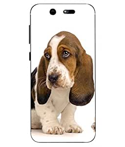 Case Cover Dog Printed Multicolor Hard Back Cover For LYF EARTH 2