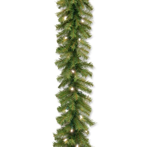 National Tree Norwood Fir Garland With 50 Concave Soft White Led Lights, 9-Feet (Nf-304L-9A-1)