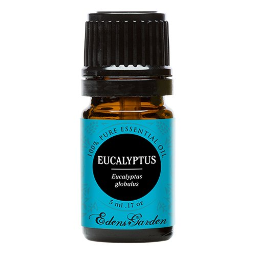 Eucalyptus Globulus 100% Pure Therapeutic Grade Essential Oil by Edens Garden- 5 ml