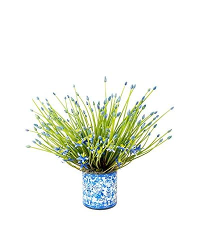 Creative Displays Inc. Spider Allium Spray Decoupage Pot, White/Green/Blue